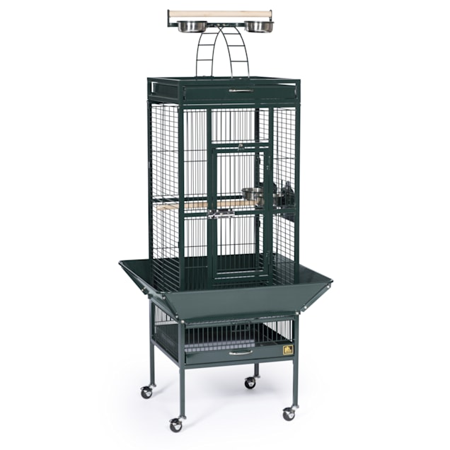 Prevue Pet Products Signature Select Series Wrought Iron Bird Cage in Metallic Jade - Carousel image #1