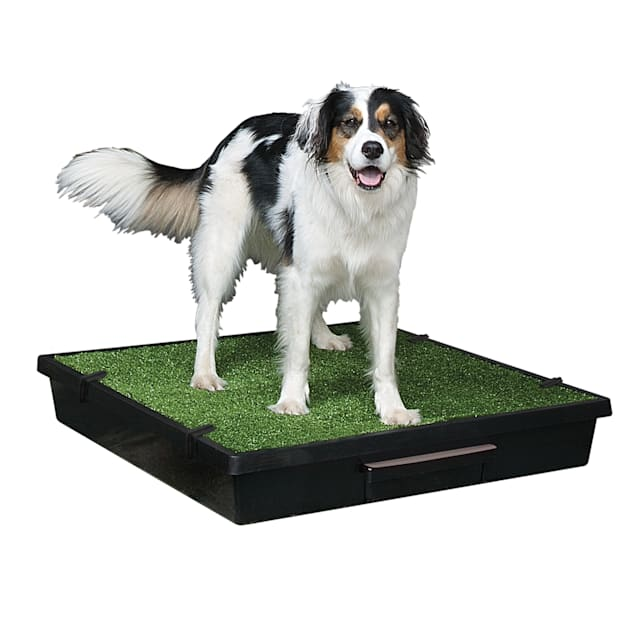 Pet Loo Indoor Yard Training System for Dogs, Large - Carousel image #1