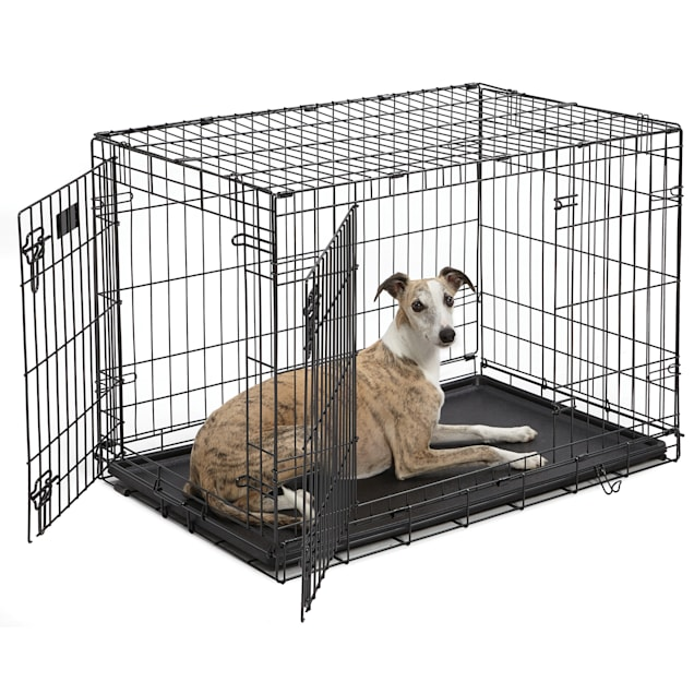 """Midwest iCrate Double Door Folding Dog Crate, 36"""" L X 23"""" W X 25"""" H - Carousel image #1"""