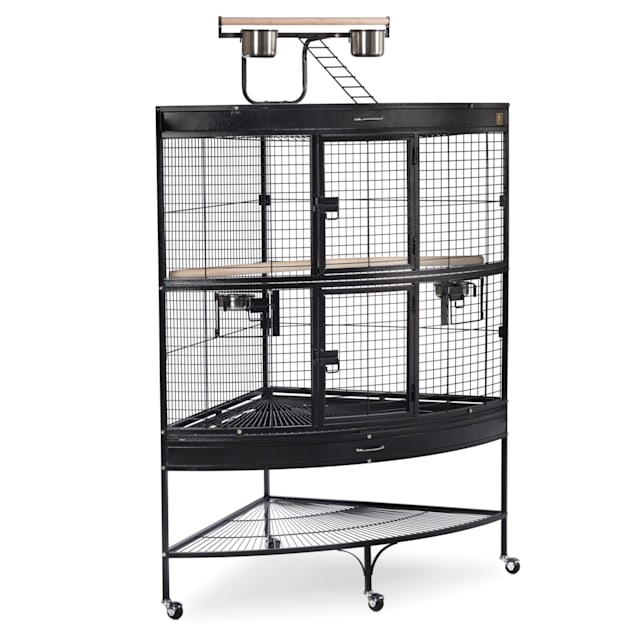 Prevue Pet Products Corner Parrot Signature Series Wrought Iron Bird Cage in Black - Carousel image #1