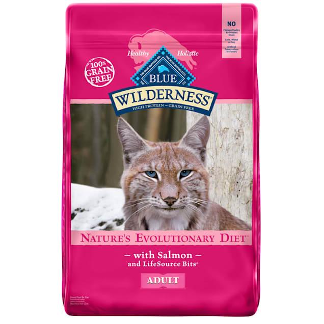 Blue Buffalo Blue Wilderness Adult Salmon Recipe Dry Cat Food, 11 lbs. - Carousel image #1