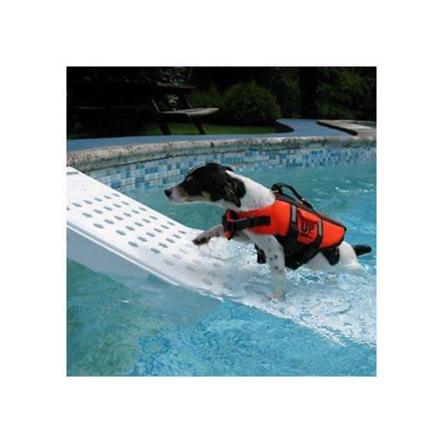 Gamma Skamper Ramp Super Pool Ramp for Pets - Carousel image #1