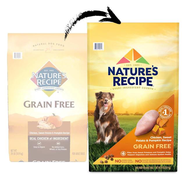 Nature's Recipe Grain-Free Chicken, Sweet Potato & Pumpkin Dry Dog Food - Carousel image #1