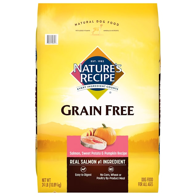 Nature's Recipe Grain-Free Salmon, Sweet Potato & Pumpkin Dry Dog Food - Carousel image #1