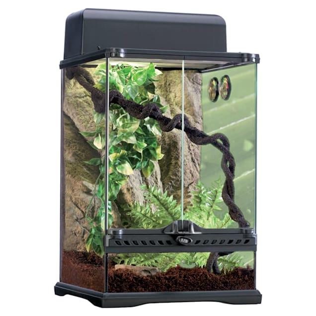 Exo-Terra Rainforest Reptile Terrarium Kit, Small - Carousel image #1