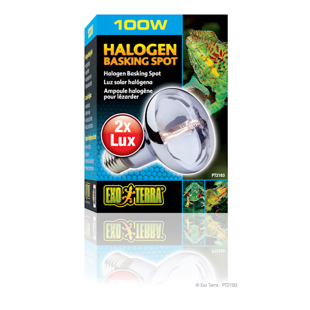 Exo-Terra Halogen Basking Spot Lamp, 100 Watts - Carousel image #1