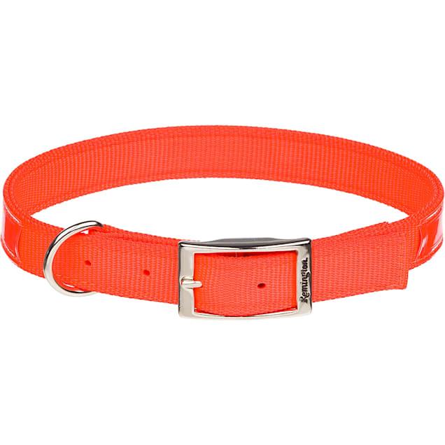 "Remington Reflective Orange Double Ply Safety Dog Collar, 18"" L X 1"" W - Carousel image #1"