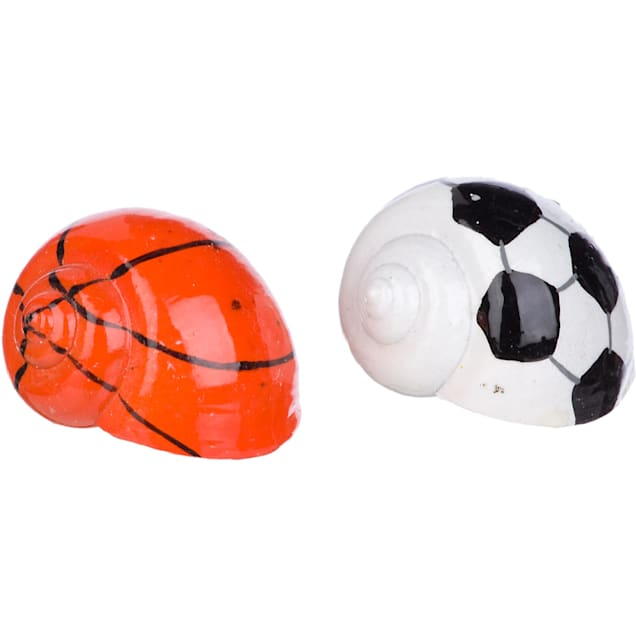 Conceptual Creations Hermit Crab Sports Shells, Pack of 2 shells - Carousel image #1