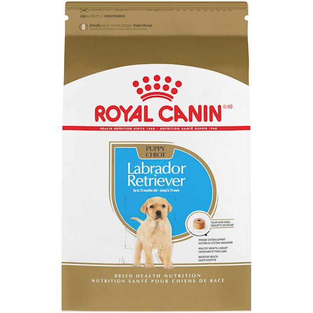 Royal Canin Breed Health Nutrition Labrador Retriever Puppy Dry Dog Food, 30 lbs. - Carousel image #1