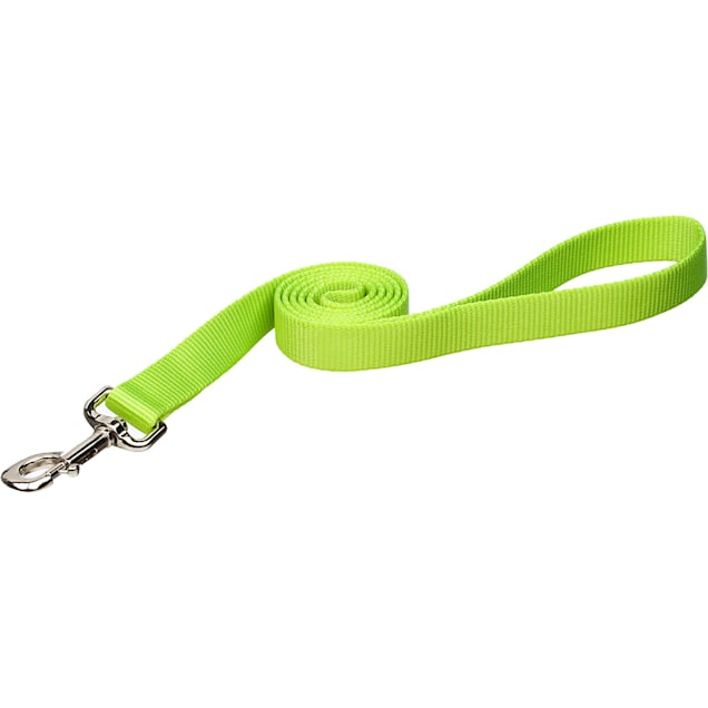 "Coastal Pet Nylon Personalized Dog Leash in Lime, 6' L X 3/4"" W - Carousel image #1"