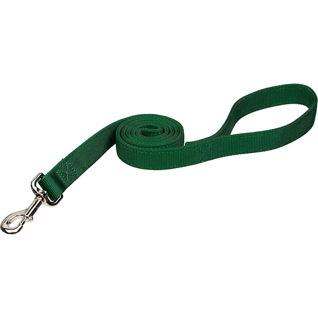 "Coastal Pet Double Ply Nylon Personalized Dog Leash in Hunter, 6' L X 1"" W - Carousel image #1"