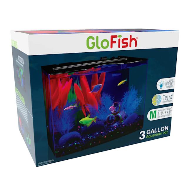 "GloFish Crescent Hidden Blue LED Light and Internal Filter Aquarium Kit 3 Gallons, 13"" L X 7"" W X 12"" H - Carousel image #1"