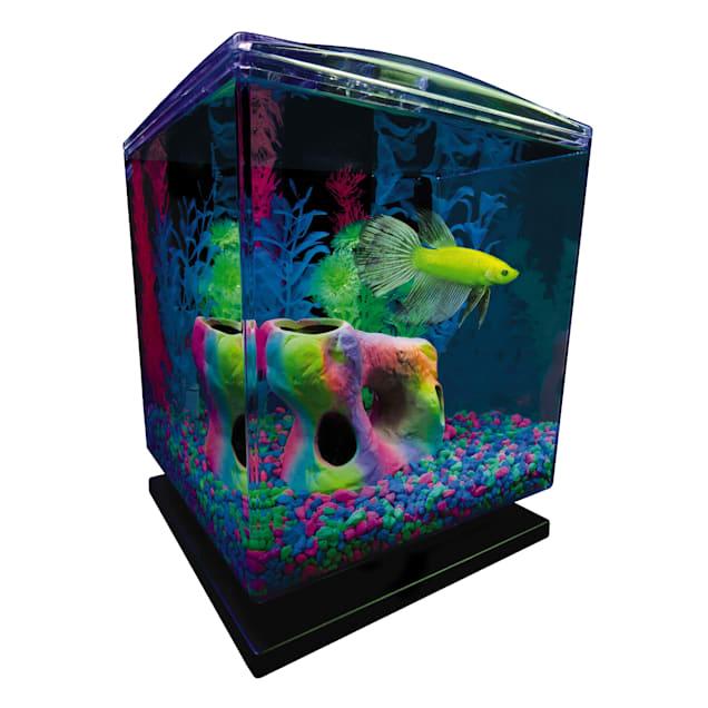 "GloFish Perfect Starter Tank Aquarium Kit 1.5 Gallons, 7.5"" H X 8.25"" W X 12.75"" H - Carousel image #1"