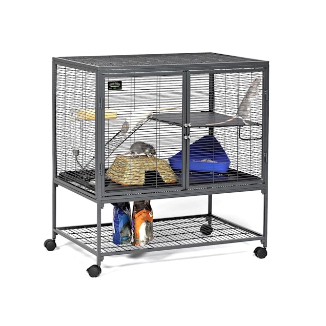 "Midwest Critter Nation Single Unit with Stand Small Animal Cage, 36"" L X 24"" W X 39"" H - Carousel image #1"