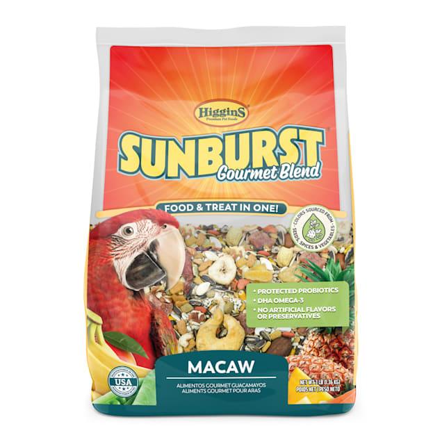Higgins Sunburst - Macaw, 3 lb - Carousel image #1