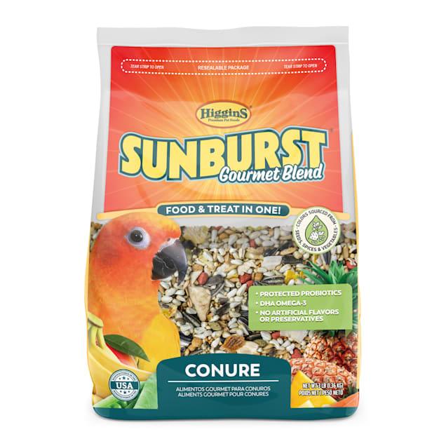 Higgins Sunburst - Conure, 3 lb - Carousel image #1