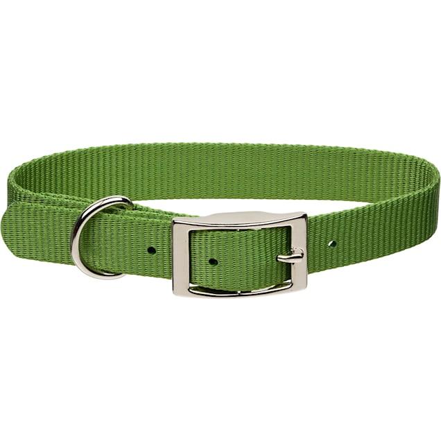 "Coastal Pet Metal Buckle Nylon Personalized Dog Collar in Palm Green, 3/4"" Width - Carousel image #1"