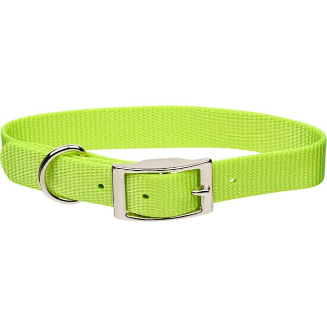 "Coastal Pet Metal Buckle Nylon Personalized Dog Collar in Lime, 3/8"" Width - Carousel image #1"