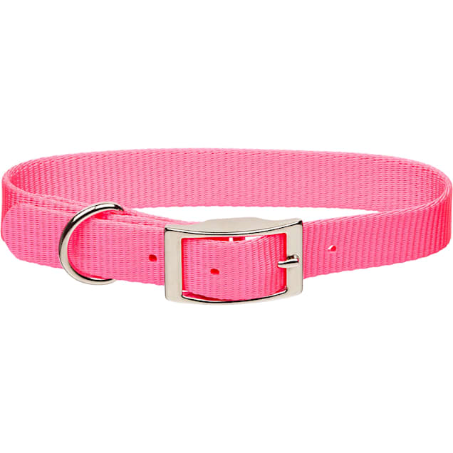 "Coastal Pet Metal Buckle Nylon Personalized Dog Collar in Neon Pink, 1"" Width - Carousel image #1"