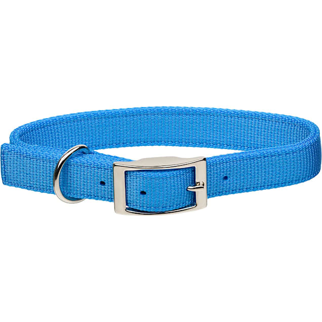 """Coastal Pet Metal Buckle Double Ply Nylon Personalized Dog Collar in Light Blue, 1"""" Width - Carousel image #1"""