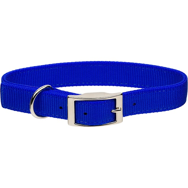 """Coastal Pet Metal Buckle Double Ply Nylon Personalized Dog Collar in Blue, 1"""" Width - Carousel image #1"""