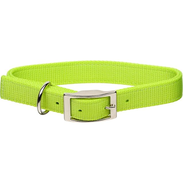 "Coastal Pet Metal Buckle Double Ply Nylon Personalized Dog Collar in Lime, 1"" Width - Carousel image #1"