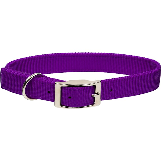 "Coastal Pet Metal Buckle Double Ply Nylon Personalized Dog Collar in Purple, 1"" Width - Carousel image #1"