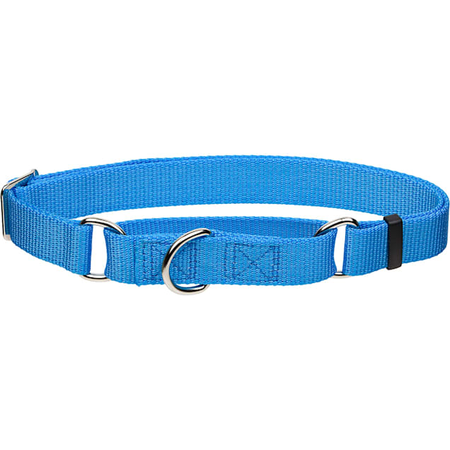 "Coastal Pet No Slip Personalized Dog Collar in Light Blue, 1"" Width - Carousel image #1"