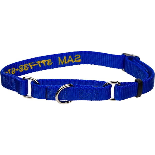 "Coastal Pet No! Slip Personalized Dog Collar in Blue, 1"" Width - Carousel image #1"