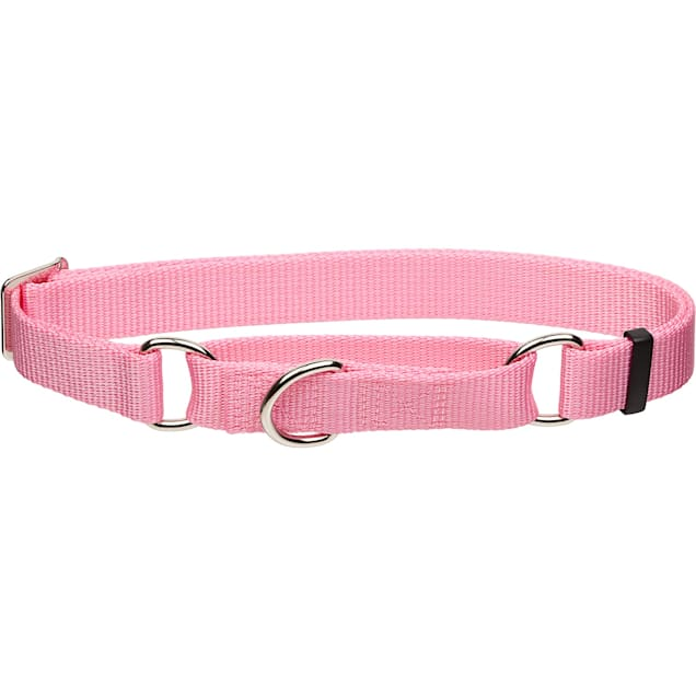 """Coastal Pet No Slip Personalized Dog Collar in Bright Pink, 1"""" Width - Carousel image #1"""