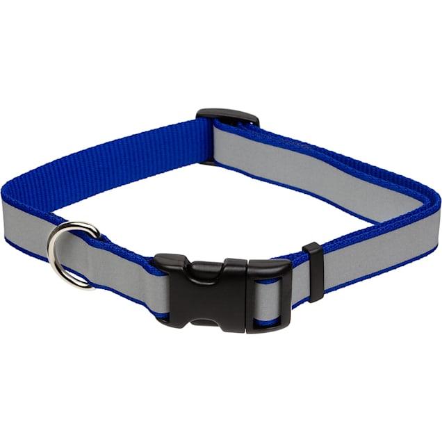 "Coastal Pet Lazer Brite Personalized Reflective Dog Collar in Blue, 1"" Width - Carousel image #1"