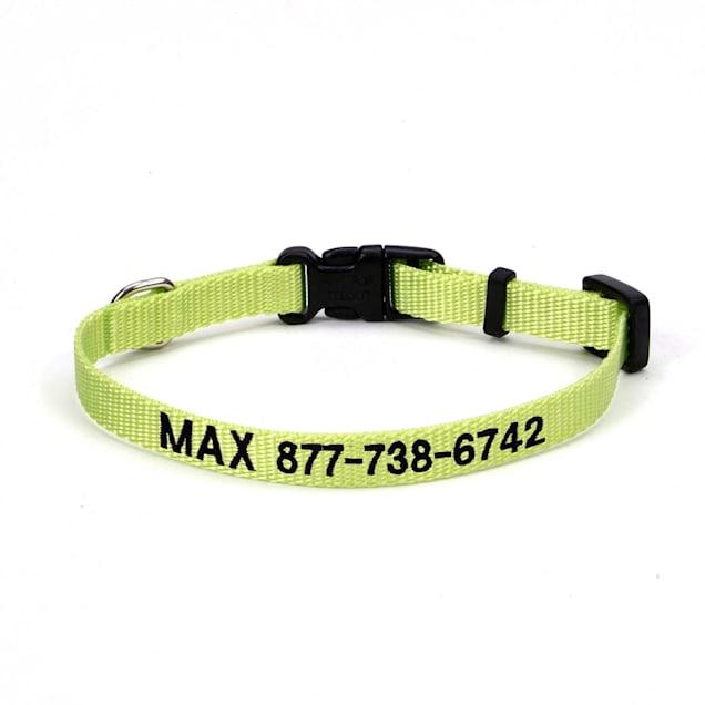 "Coastal Pet Nylon Adjustable Personalized Dog Collar in Lime, 3/4"" Width - Carousel image #1"