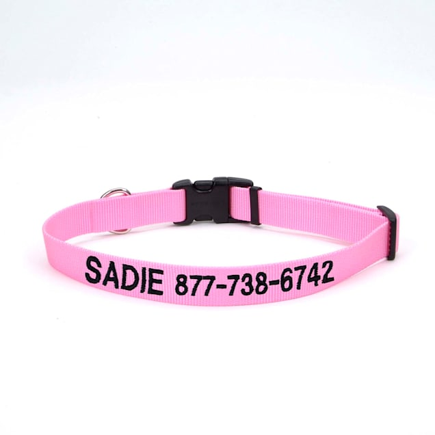 """Coastal Pet Nylon Adjustable Personalized Dog Collar in Bright Pink, 3/4"""" Width - Carousel image #1"""