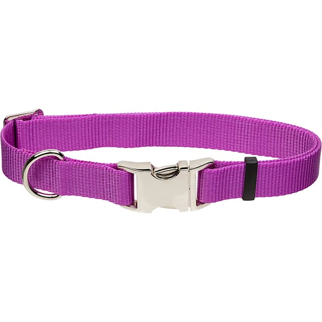 """Coastal Pet Metal Buckle Nylon Adjustable Personalized Dog Collar in Orchid, 1"""" Width - Carousel image #1"""