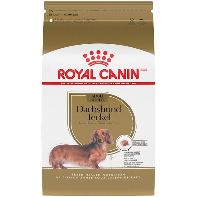 Royal Canin Breed Health Nutrition Dachshund Adult Dry Dog Food, 10 lbs. - Carousel image #1