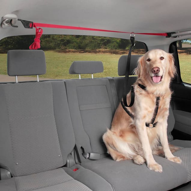 Solvit Pup Zip Zipline Dog Seat Belt - Carousel image #1