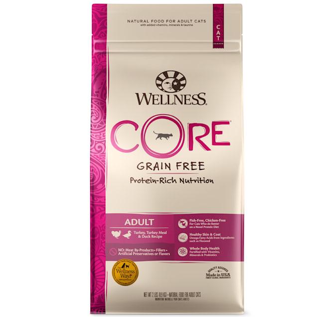 Wellness CORE Natural Grain Free Turkey & Turkey Meal & Duck Dry Cat Food, 2 lbs. - Carousel image #1