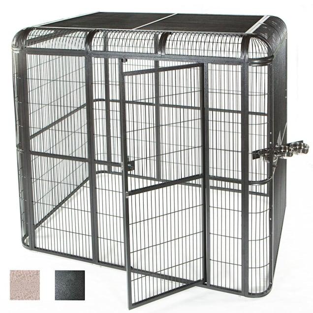 """A&E Cage Company 85"""" X 61"""" Walk In Aviary in Black - Carousel image #1"""