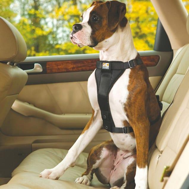 Kurgo Black Tru Fit Dual Walking Harness & Seat Belt Harness - Carousel image #1