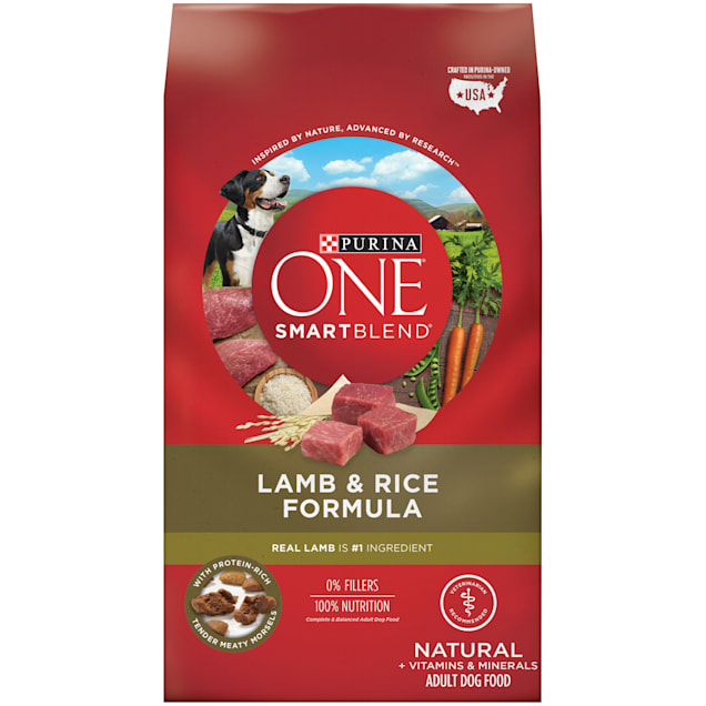 Purina ONE Natural SmartBlend Lamb & Rice Formula Dry Dog Food, 31.1 lbs., Bag - Carousel image #1