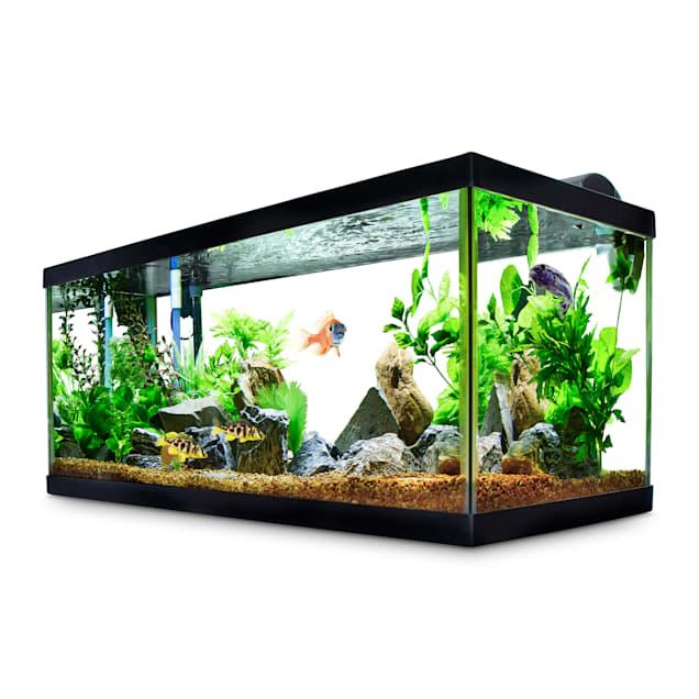 Aqueon Standard Glass Aquarium Tank 40 Gallon Breeder Petco