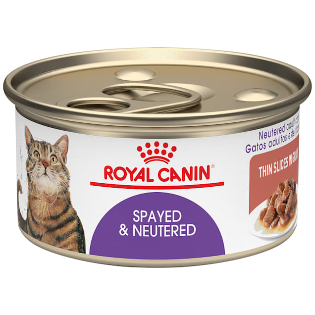 Royal Canin Feline Health Nutrition Spayed/Neutered Thin Slices In Gravy Canned Cat Food, 3 oz., Case of 24 - Carousel image #1