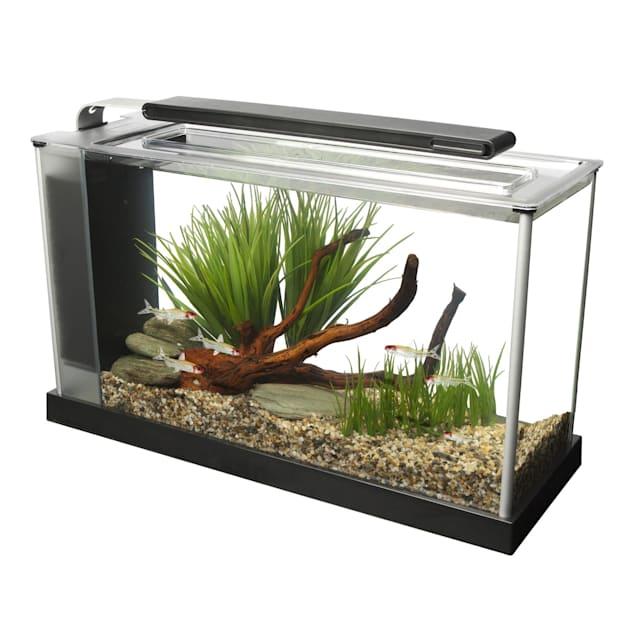Fluval 5 Gallon Spec V Aquarium Kit, Black - Carousel image #1
