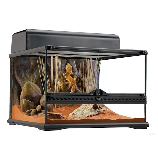 "Exo-Terra Glass Terrarium, 18"" L X 18"" W X 12"" H - Carousel image #1"