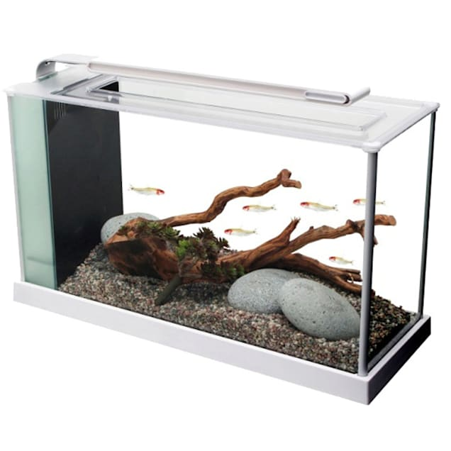 Fluval 5 Gallon Spec V Aquarium Kit, White - Carousel image #1