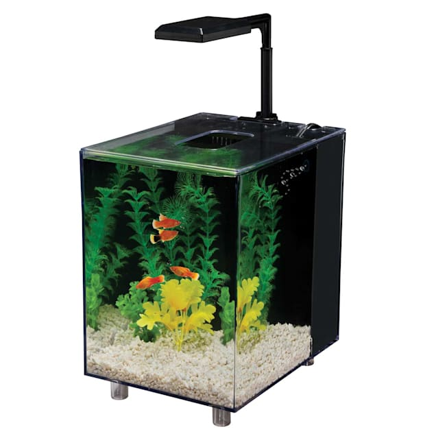 Penn Plax 2 Gallon Prism Nano Aquarium Kit, Black - Carousel image #1