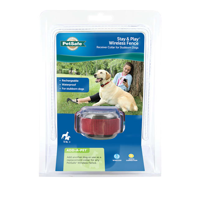 PetSafe Stay & Play Stubborn Wireless Fence Receiver Collar for Dogs - Carousel image #1