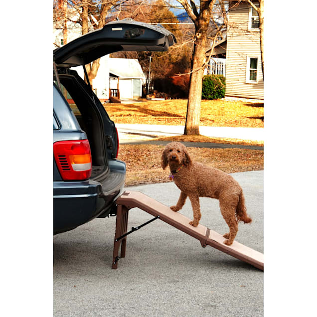 "Pet Gear Free Standing Pet Ramp in Chocolate, 56"" L X 16"" W X 23"" H - Carousel image #1"