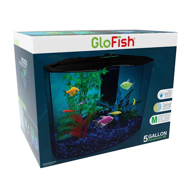 "GloFish Crescent Hidden Blue LED Light & Internal Filter Aquarium Kit 5 Gallons, 16.5"" L x 11.25"" W x 13.2"" H - Carousel image #1"