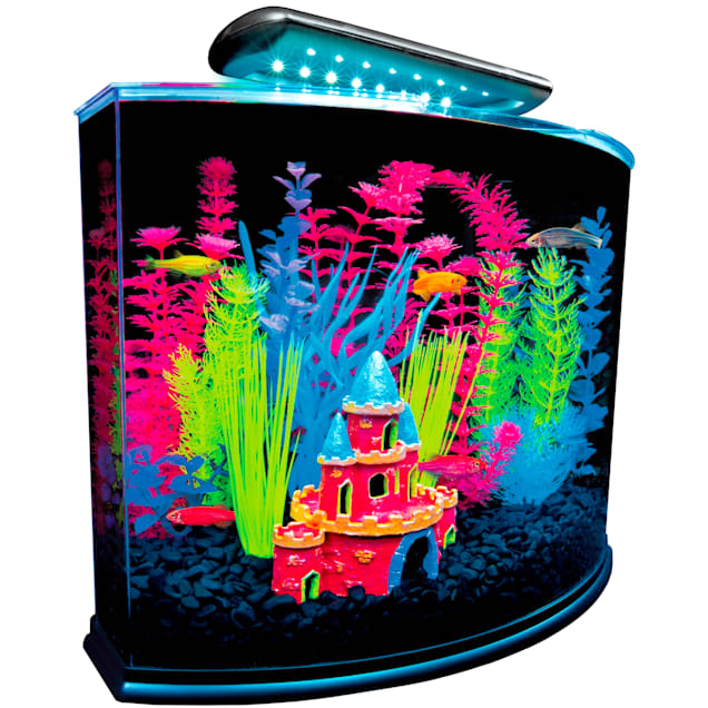"GloFish Crescent Hidden Blue LED Light & Internal Filter Aquarium Kit 5 Gallons, 16.5"" L x 11.25"" W x 13.2"" H - Carousel image #1"